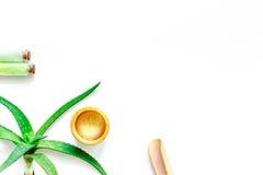 'Εφαρμογή' του διαφανούς βερνικιού δερμάτων προσοχής Aloe το πήκτωμα και aloe Βέρα της Βέρα βγάζουν φύλλα στην άσπρη τοπ άποψη υπ Στοκ φωτογραφία με δικαίωμα ελεύθερης χρήσης