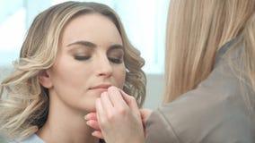 Εφαρμογή του καφετιού περιγράμματος στα χείλια στοκ εικόνα με δικαίωμα ελεύθερης χρήσης