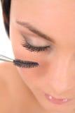 'Εφαρμογή' makeup της γυναίκας Στοκ εικόνα με δικαίωμα ελεύθερης χρήσης