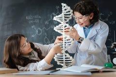 Εφευρετικά παιδιά που μελετούν τη μικροβιολογία στο εργαστήριο Στοκ φωτογραφία με δικαίωμα ελεύθερης χρήσης