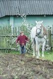 Εφηβικός αγρότης και λευκό άλογο κατά τη διάρκεια του παραδοσιακού ενιαίος-πλαισιωμένου οργώματος Στοκ εικόνα με δικαίωμα ελεύθερης χρήσης