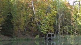 Εφοδιασμένος με ξύλα κατοικήστε στη λίμνη στα ξύλα φιλμ μικρού μήκους