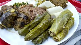 Εύγευστα αραβικά τρόφιμα στο πιάτο Στοκ εικόνες με δικαίωμα ελεύθερης χρήσης