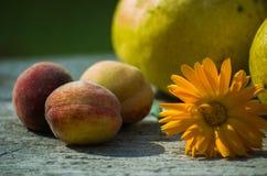 εύγευστα αχλάδια Στοκ Εικόνες
