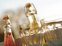 Εύγευστα θερινά ποτά σε έναν κήπο Στοκ εικόνα με δικαίωμα ελεύθερης χρήσης
