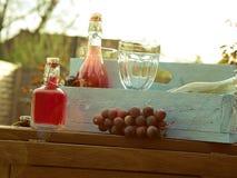Εύγευστα θερινά ποτά σε έναν κήπο Στοκ φωτογραφία με δικαίωμα ελεύθερης χρήσης