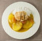 Εύγευστα ιαπωνικά κάρρυ και Tonkatsu με το μαγειρευμένο ρύζι Στοκ Εικόνες