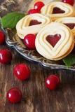 Εύγευστα μπισκότα διακοπών Στοκ Εικόνες