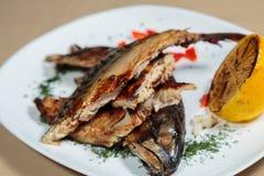 Εύγευστα πρόχειρα φαγητά σε ένα άσπρο πιάτο Στοκ Εικόνα