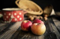 Εύγευστα φρέσκα μήλα φθινοπώρου στον ξύλινο πίνακα Αγροτικό ύφος Στοκ εικόνα με δικαίωμα ελεύθερης χρήσης
