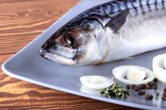 Εύγευστα φρέσκα ψάρια θάλασσας στο ξύλινο υπόβαθρο Υγιής έννοια τροφίμων, διατροφής ή μαγειρέματος Στοκ Εικόνες