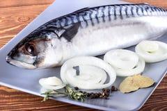 Εύγευστα ψάρια θάλασσας στο ξύλινο υπόβαθρο Υγιής έννοια τροφίμων, διατροφής ή μαγειρέματος Στοκ Φωτογραφία