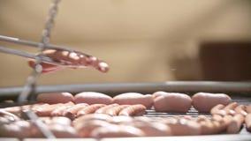 Εύγευστα ψημένα στη σχάρα λουκάνικα χοιρινού κρέατος απόθεμα βίντεο