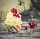 Εύγευστα cupcakes με τα μούρα Στοκ φωτογραφία με δικαίωμα ελεύθερης χρήσης