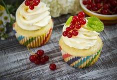 Εύγευστα cupcakes με τα μούρα Στοκ εικόνα με δικαίωμα ελεύθερης χρήσης
