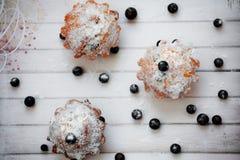 Εύγευστα muffins με τη μαύρη σταφίδα Στοκ Εικόνες