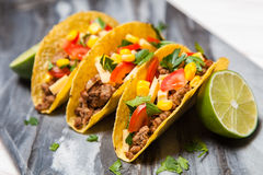 εύγευστα tacos στοκ φωτογραφία
