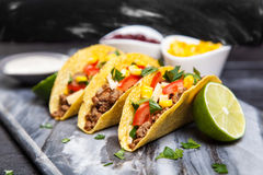 εύγευστα tacos Στοκ φωτογραφίες με δικαίωμα ελεύθερης χρήσης
