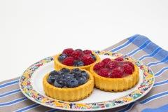 Εύγευστα tarts λίγων φρούτων Στοκ Εικόνα