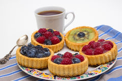 Εύγευστα tarts λίγων φρούτων Στοκ Φωτογραφίες