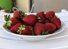 Εύγευστες κόκκινες και φρέσκες φράουλες σε ένα άσπρο πιάτο Οι κόκκινες φρέσκες φράουλες κλείνουν επάνω Στοκ φωτογραφία με δικαίωμα ελεύθερης χρήσης