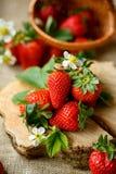 Εύγευστες υγιείς φράουλες την άνοιξη Στοκ Φωτογραφίες
