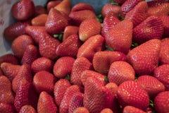 Εύγευστες φράουλες στην υπεραγορά έτοιμη να πωλήσει Στοκ φωτογραφία με δικαίωμα ελεύθερης χρήσης
