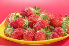 Εύγευστες ώριμες φράουλες στοκ εικόνα