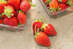 Εύγευστες ώριμες φράουλες στοκ φωτογραφίες
