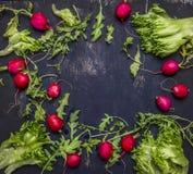 Εύγευστη κατάταξη του κειμένου θέσεων αγροτικών φρέσκων λαχανικών, τοπ άποψη πλαισίων Στοκ φωτογραφία με δικαίωμα ελεύθερης χρήσης