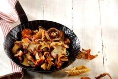 Εύγευστη κατάταξη των τηγανισμένων μανιταριών φθινοπώρου Στοκ φωτογραφίες με δικαίωμα ελεύθερης χρήσης