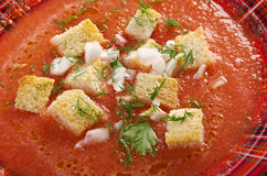 Εύγευστη κρύα σούπα Gazpacho Στοκ Εικόνες