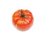 Εύγευστη κόκκινη ντομάτα Στοκ εικόνα με δικαίωμα ελεύθερης χρήσης