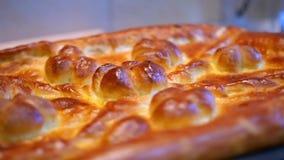 Εύγευστη πρόσφατα γίνοντη πίτα φιλμ μικρού μήκους