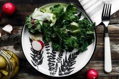 Εύγευστη σαλάτα άνοιξη με τις ελιές Στοκ εικόνες με δικαίωμα ελεύθερης χρήσης
