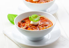 Εύγευστη σούπα minestrone Στοκ φωτογραφία με δικαίωμα ελεύθερης χρήσης