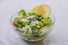 Εύγευστη υγιής χορτοφάγος σαλάτα μαρουλιού, με το κόκκινο και άσπρο ραδίκι, το σκόρδο άνοιξη, τις φέτες λεμονιών και το βασιλικό Στοκ εικόνα με δικαίωμα ελεύθερης χρήσης