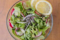 Εύγευστη υγιής χορτοφάγος σαλάτα μαρουλιού, με το κόκκινο και άσπρο ραδίκι, το σκόρδο άνοιξη, τις φέτες λεμονιών και το βασιλικό, Στοκ εικόνα με δικαίωμα ελεύθερης χρήσης