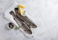 Εύγευστη φρέσκια πέστροφα ψαριών Στοκ φωτογραφία με δικαίωμα ελεύθερης χρήσης