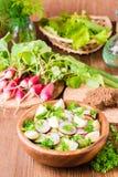 Εύγευστη φυτική σαλάτα άνοιξη από το αγγούρι, ραδίκι, αυγό Στοκ Εικόνες