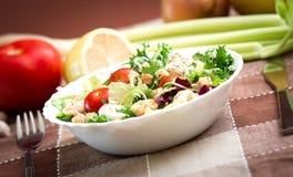 Εύγευστη χορτοφάγος σαλάτα Στοκ φωτογραφία με δικαίωμα ελεύθερης χρήσης