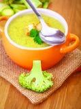 Εύγευστη χορτοφάγος σούπα Στοκ Φωτογραφίες