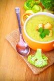 Εύγευστη χορτοφάγος σούπα Στοκ φωτογραφία με δικαίωμα ελεύθερης χρήσης