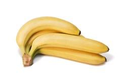 εύγευστος φρέσκος μπανανών Στοκ Εικόνες