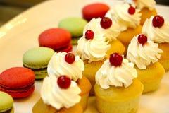 Εύγευστο κέικ φλυτζανιών με την κρέμα και το κεράσι Στοκ εικόνα με δικαίωμα ελεύθερης χρήσης