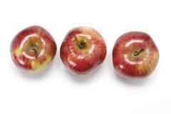 εύγευστο κόκκινο μήλων Στοκ φωτογραφία με δικαίωμα ελεύθερης χρήσης