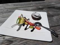 Εύγευστο λειωμένο κέικ σοκολάτας με το παγωτό νωπών καρπών και βανίλιας στον αγροτικό υπαίθριο ξύλινο πίνακα στο καλοκαίρι Στοκ εικόνα με δικαίωμα ελεύθερης χρήσης