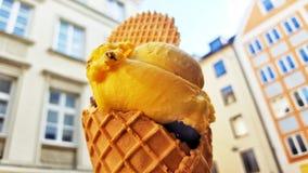Εύγευστο παγωτό μάγκο Στοκ Εικόνα