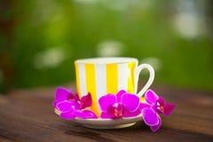 Εύγευστο πράσινο τσάι σε ένα όμορφο κύπελλο γυαλιού στον πίνακα Στοκ εικόνες με δικαίωμα ελεύθερης χρήσης