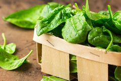 Εύγευστο σπανάκι Φρέσκα οργανικά φύλλα σπανακιού στο καλάθι ένας ξύλινος πίνακας Διατροφή, να κάνει δίαιτα έννοια Τρόφιμα Vegan,  στοκ εικόνα με δικαίωμα ελεύθερης χρήσης
